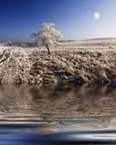 frost noc Obrazy Royalty Free