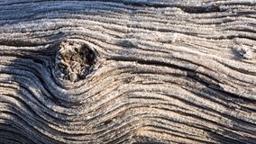 Frost on old tree trunk with a knot of wood creating flowing lines Royalty Free Stock Photo