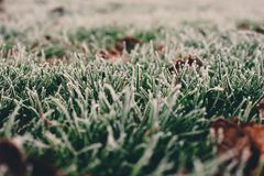 Free Frost On Grass And Leaves On A Cold Foggy Winter Morning In London, UK. Royalty Free Stock Photography - 108237267