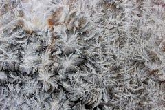 Frost på fönstret Arkivfoton