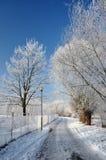 Frost på träd längs den snöig vägen Royaltyfria Foton