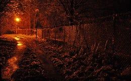 Frost på vägen, på träden och på staketet Arkivbild
