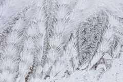 Frost Pattern Royalty Free Stock Image