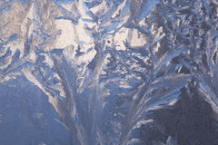 Frost Pattern Background Stock Photos