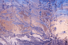 Frost Pattern Background. A winter frost pattern spread across glass with a purple and blue background Stock Image