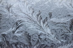 Frost pattern. Ice patterned glass of a window in winter Royalty Free Stock Images