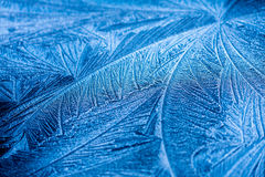 Frost Pattern Stock Images