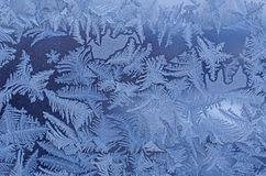 Frost pattern on window Royalty Free Stock Image