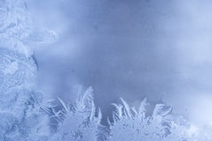 Frost pattern on a window glass Royalty Free Stock Photos