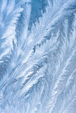 Frost pattern on window glass Royalty Free Stock Photography