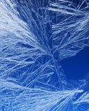 Frost pattern on a window glass Stock Photos