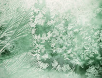 Frost pattern on the window Royalty Free Stock Photo