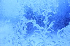 Frost pattern Stock Photos