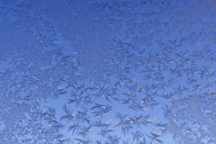 Frost pattern window snowflakes Stock Image