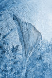 Frost pattern Royalty Free Stock Photography