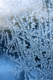 Frost patterns on glass Stock Images