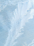 Frost patterns on glass. Stock Photos