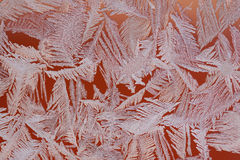 Frost patterns on a window Royalty Free Stock Photo