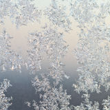Frost patterns on window glass at winter sunrise Stock Photos
