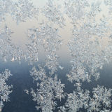 Frost patterns on windowpane at winter dawn Stock Photography