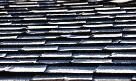 Frost on roof shingles Stock Photography
