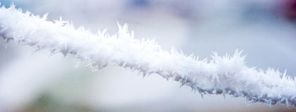 Frost on rope Royalty Free Stock Images