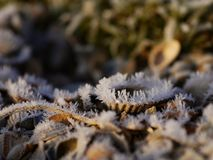 Frost shelves. Beautiful ice or frost on shelves near a beach Stock Photo