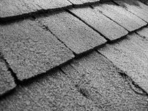 Frost on Shingles. A Frosty, B&W picture of old shingles Royalty Free Stock Photos