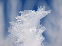 Frost Snow Royalty Free Stock Photography