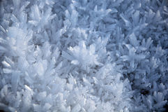Frost & snow Ice crystals Stock Images