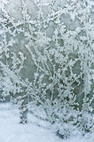 Frost and snow; patterns on the window pane. Patterns of ice crystals , looking like white ferns on a pane of glass with snow outside the window mainly in the stock photography