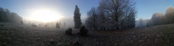 Winterlandscape stock photo