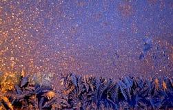 Frost som målas på fönstermodellerna Frostigt mönstrar fotografering för bildbyråer