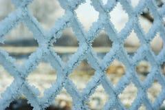 Frost som täckas på det band staketet Arkivbilder