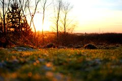 Frost-Sonnenaufgang Stockfoto