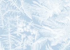 Frost stars Stock Images