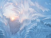 Frost and sun. Frosty natural pattern and sun on winter window Royalty Free Stock Images