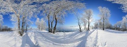 frost sun Arkivbild