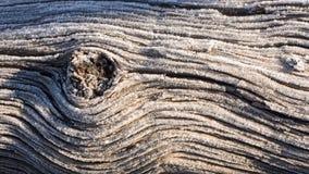 Frost sur le vieux tronc d'arbre avec un noeud de bois créant des lignes d'écoulement Photo libre de droits