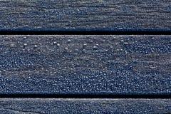 Frost sur un banc Photo stock
