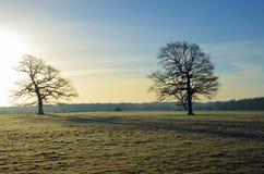 Frost täckt landskap i England Arkivbilder