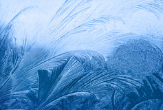 Frost texture. Blue frost on winter glass Royalty Free Stock Images