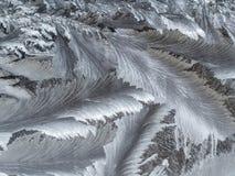 Frost texture close up Stock Photos