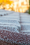 Frost on a tiled roof in portrait Royalty Free Stock Photo