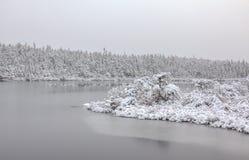 Frost und Schnee Stockbild