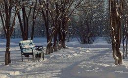 Frost und sonnen- Tag ist wunderbar lizenzfreie stockbilder