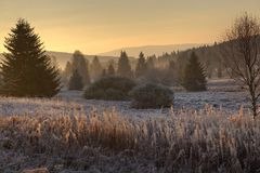 Frost und Sonnenaufgang in den Bergen Stockfotos