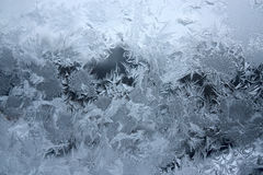 Frost on window Stock Images