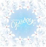 Frost on the window, blue snowflakes, holly, lettering winter Holidays on blue background Stock Photos