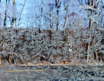 Frost on window. Feathery frost with woods and road background Stock Images